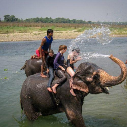 chitwan park